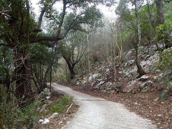 Sterrando Bike: Riserva Naturale Monte Soratte