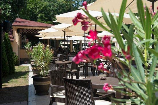 Bankya, Bulgária: Restaurant