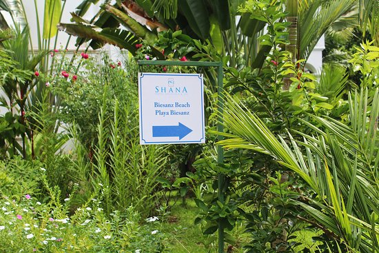 Shana By The Beach, Hotel Residence & Spa: Entrance to the Playa Biesanz