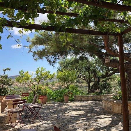Bilde fra Scalani Hills Boutari Winery & Residences