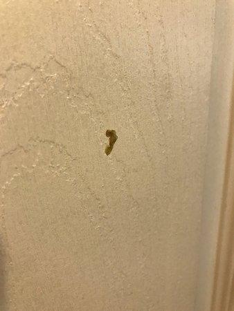 Warfield Hotel: dried booger on the bathroom door