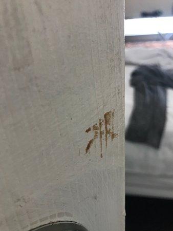 Warfield Hotel: boogers on the bathroom door