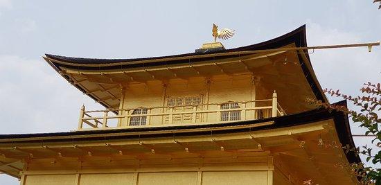 Den gyldne paviljong (Kinkaku-ji): Beautiful temple and surrounding gardens