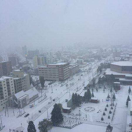 Hoshino Resorts OMO7 Asahikawa: お部屋からの眺め
