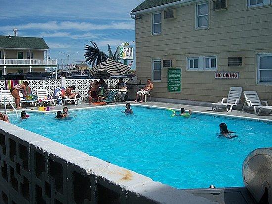 Desert Palm Inn: pool area