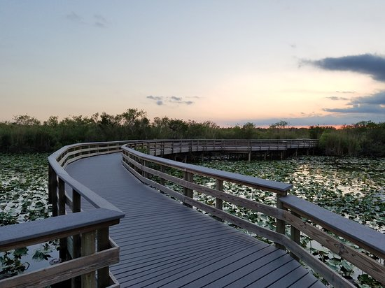 Anhinga Trail: Near the end of the trail