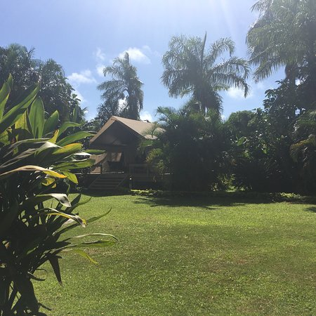 Excellent glamping escape to sultry rural Rarotonga