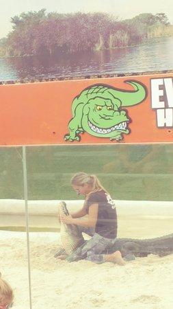 Фотография Everglades Airboat Tour & Gator Boys Alligator Rescue Show