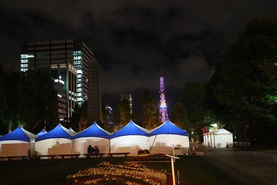 Sapporo TV Tower: 大通り公園から望むテレビ塔