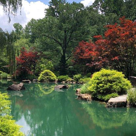 Фотография Gibbs Gardens