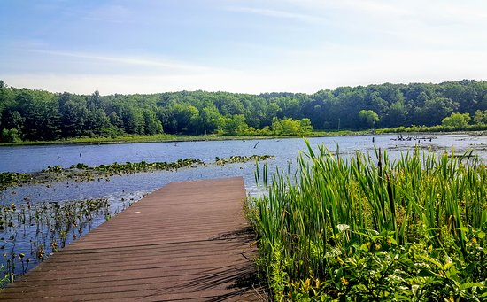 Pickerel Lake Park