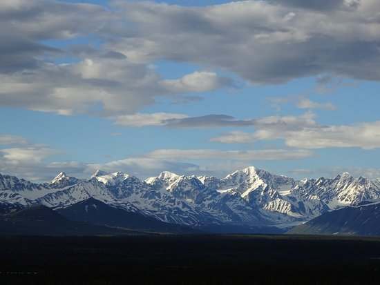 Denali Highway Jeep Excursion: The view