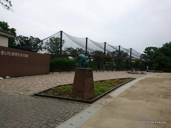 Shimin no Mori: 大きなネットの中がリスの住処となっており、中で放し飼いとなっています。見学者は中に入って見ることができます。