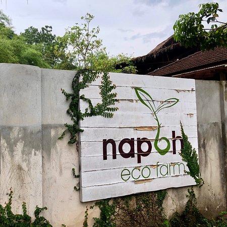 Napoh Eco Farm