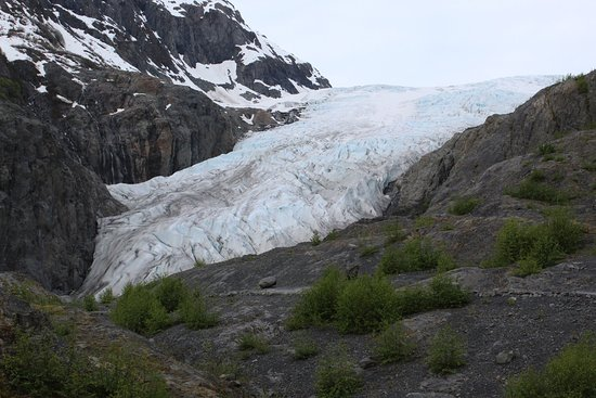 Exit Glacier from the main outlook