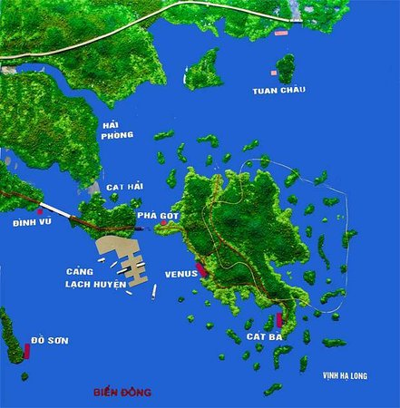 Vintage Junks: Phu Long Mangroves Villages