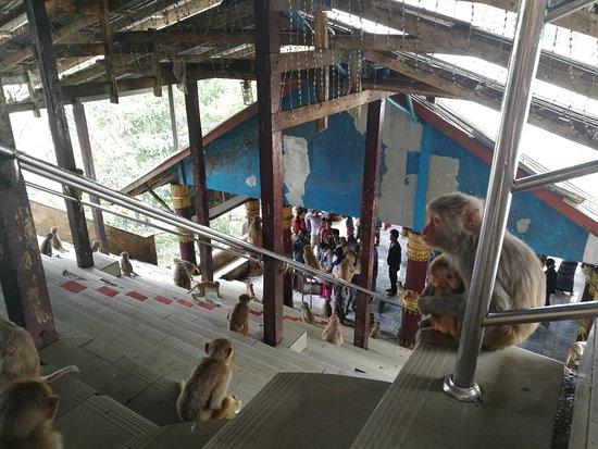 Popa, Myanmar: IMG_20180616_100001_large.jpg