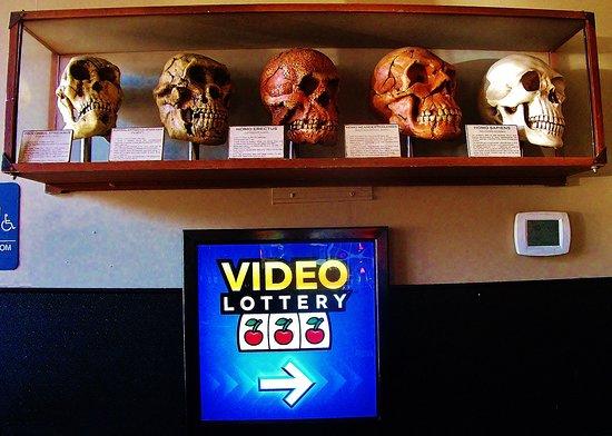 Schmizza Pub & Grub: Display Case near video Poker and Restroom area.