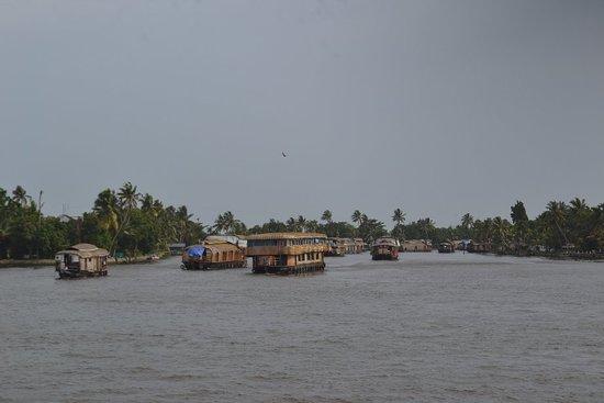 Kuttanad, India: DSC_0180_large.jpg