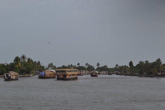 Kuttanad, Indien: DSC_0181_large.jpg