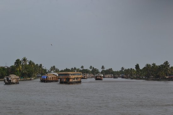 Kuttanad 사진