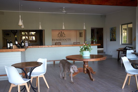 Remhoogte Wine Estate: Tasting Room of Interior