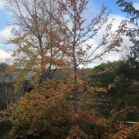 Lilianfels Resort & Spa - Blue Mountains: photo0.jpg