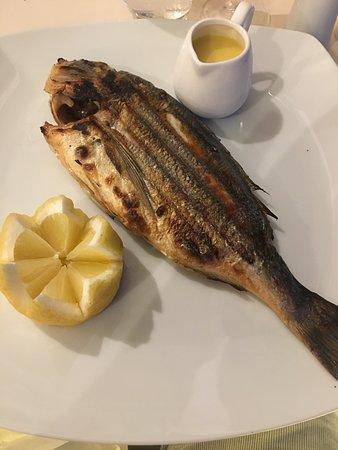 Kyma Beach Restaurant: Fresh Sea Bream
