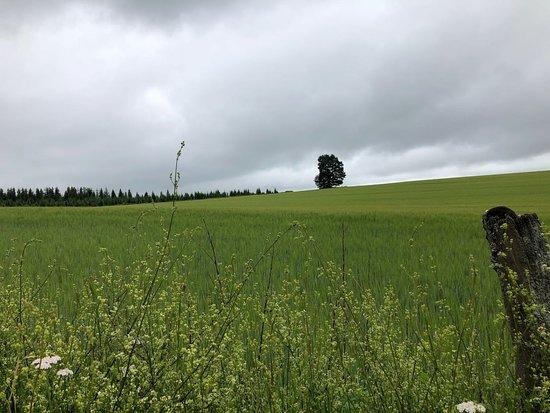 Esch-sur-Sure Photo