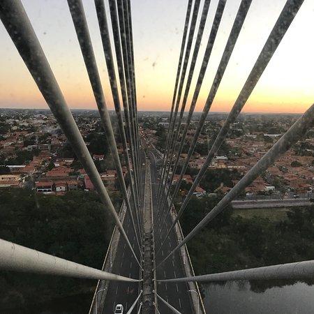 Ponte Estaiada Photo