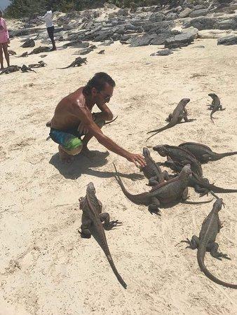 Exuma Water Sports: My freinds the Iguanas