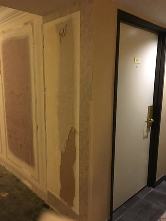 Eldorado Resort Casino: room was up against the construction area