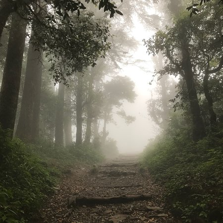 Dhanaulti Adventure Park