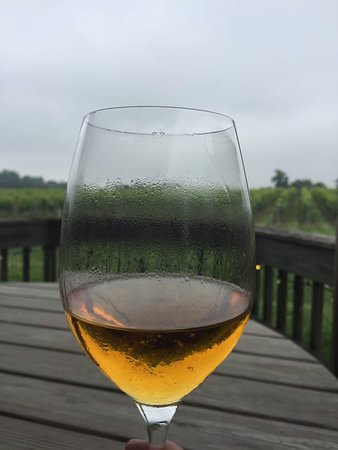 Avondale, เพนซิลเวเนีย: Enjoying a glass of La Prima Donna on the deck overlooking the vineyard