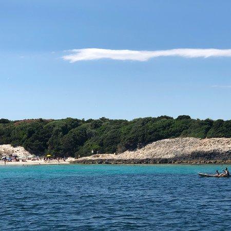 La Mediterranee照片