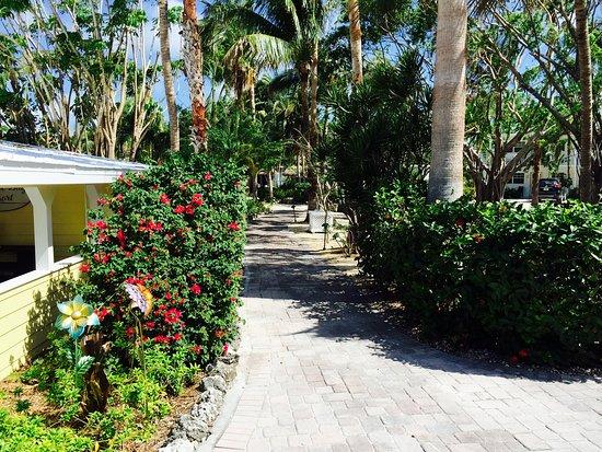 Atlantic Bay Resort: Walkway