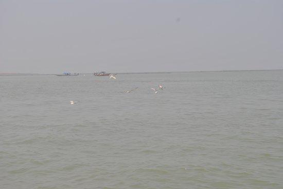 Chilika Lake: Inside the lake