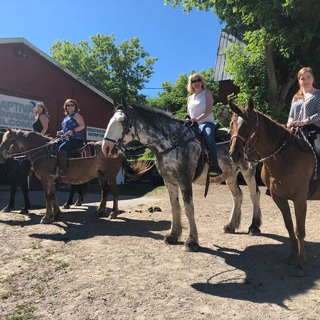 Captiva Farms: Beautiful day for a ride!