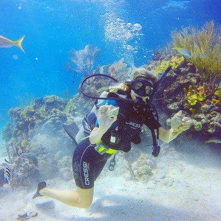 Bahama Divers Photo