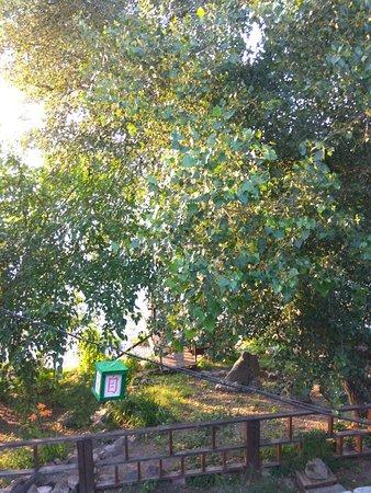 Nova Kakhovka, Ukraine: TA_IMG_20180627_193021_large.jpg
