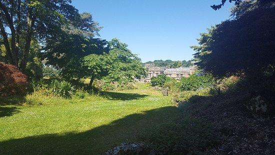 Forde Abbey & Gardens-bild