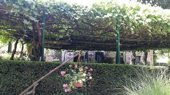 Antica Trattoria Al Bosco: esterno