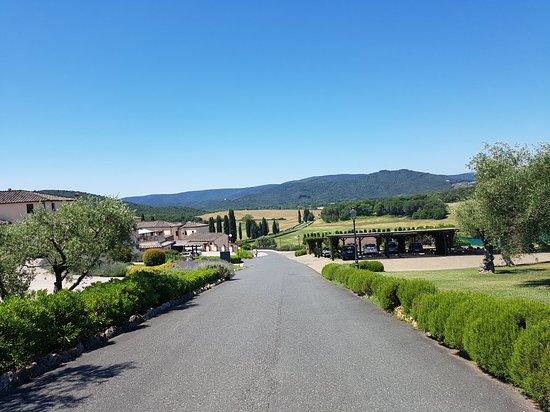Bagnaia, Italy: 20180623_112408_large.jpg