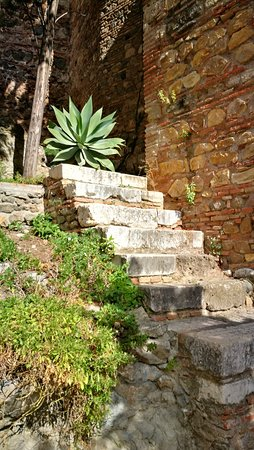 Крепость Малага: Alcazaba