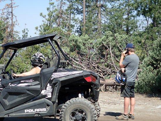 Sierra Nevada Motorsports: Phones work sometimes!