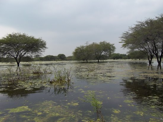 Tiruchirappalli District, Ấn Độ: Nature Tour