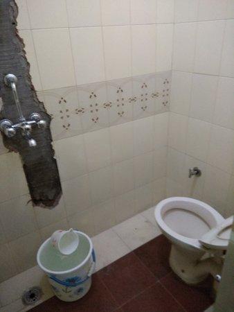 Sharma Guest House: bathroom
