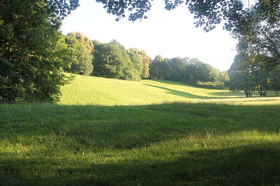 Ambassador Parkhotel: Park nearby