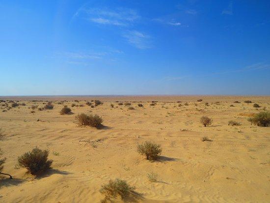 Shabikah, Tunezja: пустыня