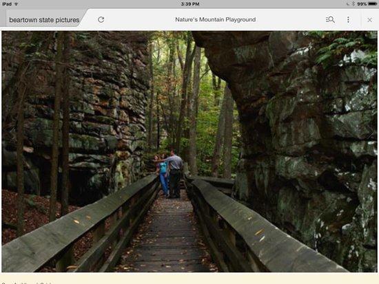 Slatyfork, Virginia Occidental: Bear town state park